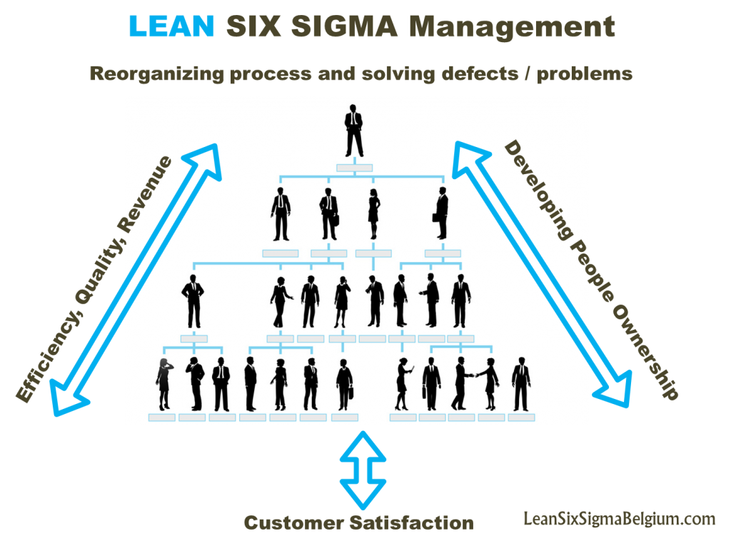 Lean Six Sigma Management