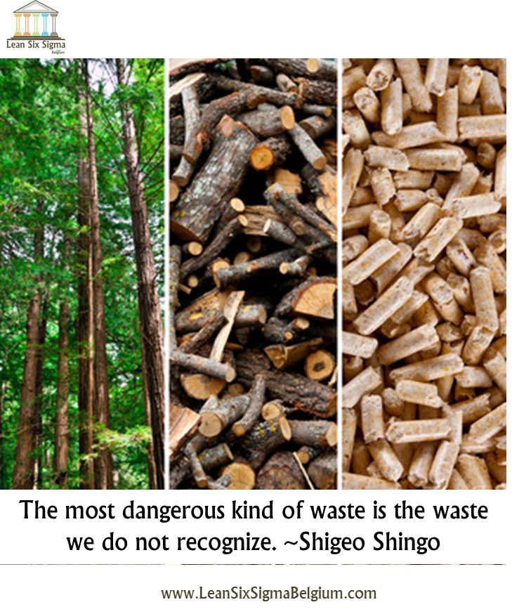 Quote - The most dangerous kind of waste is the waste we do not recognize. ~Shigeo Shingo